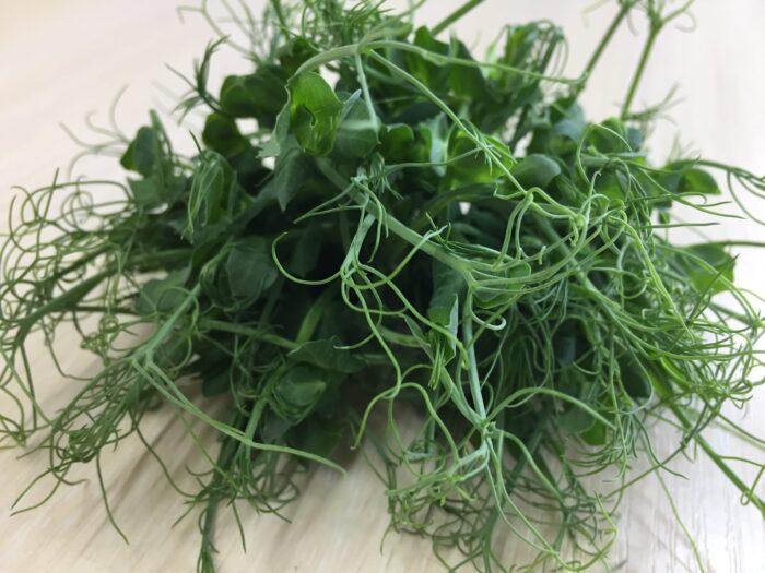 Микрозелень (микрогрин) СПБ горох